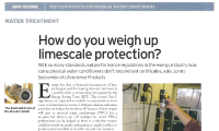 Weighing Up Scale Protection